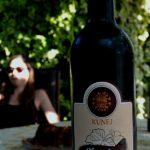 Bizeljsko wine tasting experience Slovenia chocolate wine 1