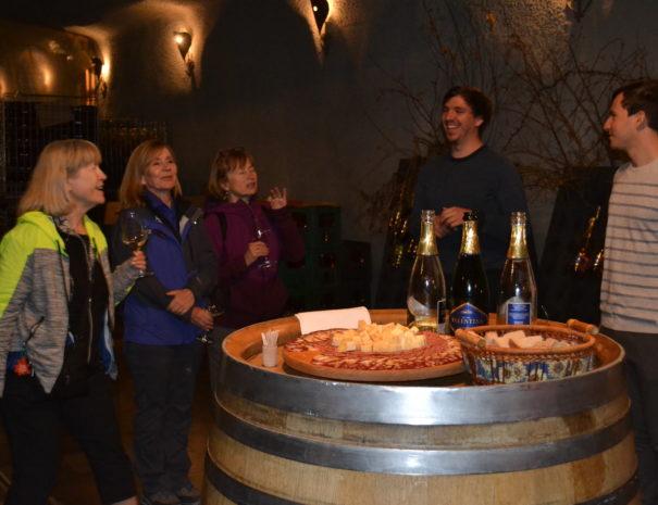 Vinski izleti po Sloveniji