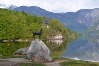 Bohinj Lake, Enjoy Slovenia
