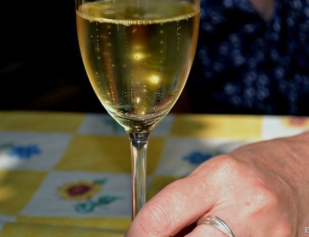Slovenia wine tasting tour allways fun with fine slovenian wine 6