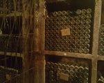 Wine cellar visit in Ptuj