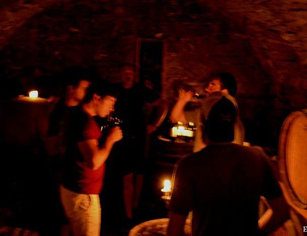 Wine tasting tours Slovenia wine cellar 8