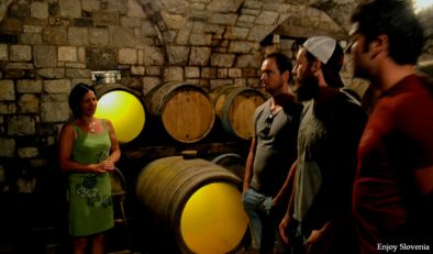 Slovenia_wine_tasting_tour_wine_cellar_9