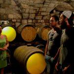 Slovenia_wine_tasting_tour_wine_cellar_9.jpg