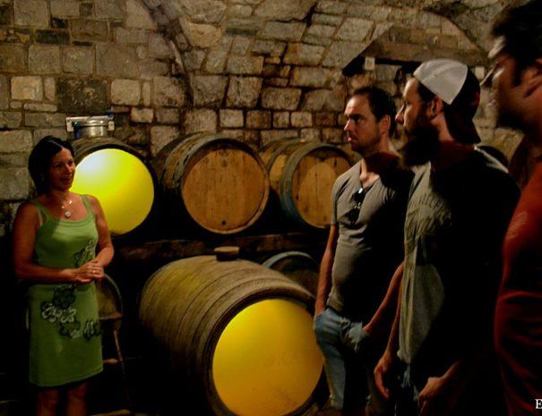 Wine tasting tour Slovenia