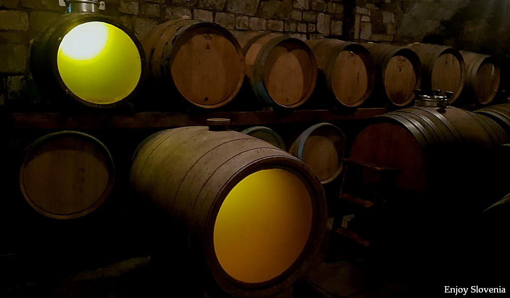 Visit Karst wine cellars and get the best wine tasting experience