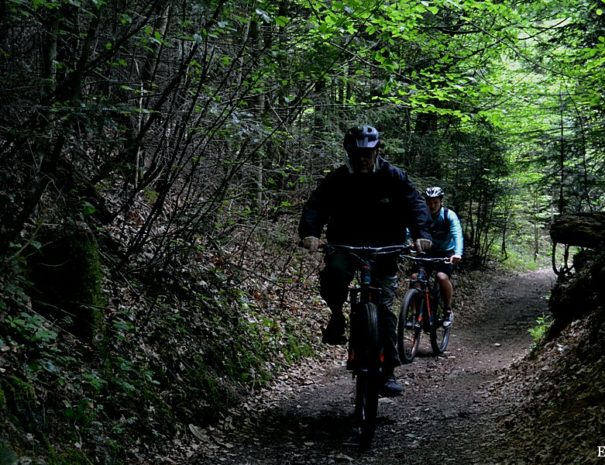 Tours and holidays in Slovenia biking tour 2
