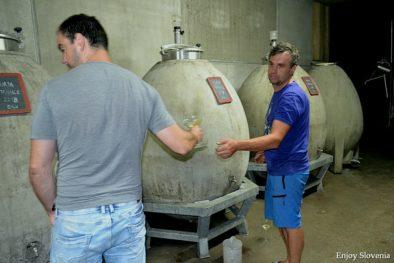 Barell wine tasting Slovenia