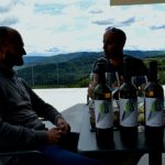 Wine tasting experience in Vipava valley