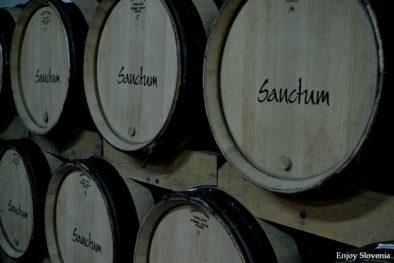 Sanctum Wine cellar visit Slovenia