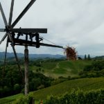 Wine tasting tour Slovenia Styria wine region 1