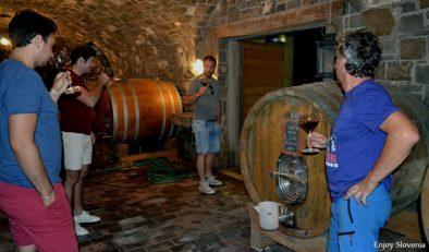 Wine tasting tour Slovenia Vipava valley barrel wine tasting fine slovenain wine