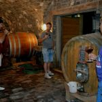 Wine tasting tour Slovenia Vipava valley barrel wine tasting fine slovenain wine