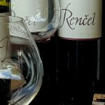 Wine tasting tour to Karst wine region tasting fine slovenian wine in Rencel wine cellar 1