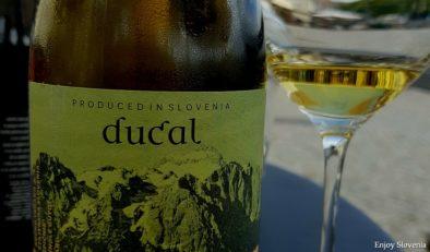 Wine tasting tour to Styria wine region tasting fine slovenian wine in Maribor 1