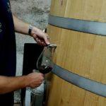 wine tasting experience in wine cellar in slovenia zaro